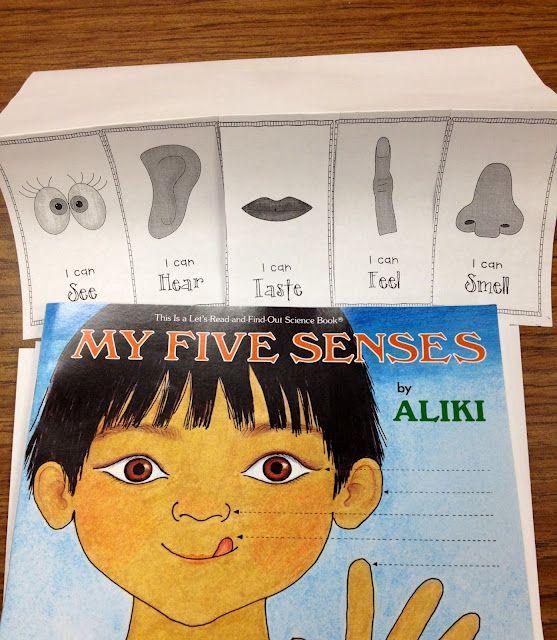 5 senses flip-book {freebie}