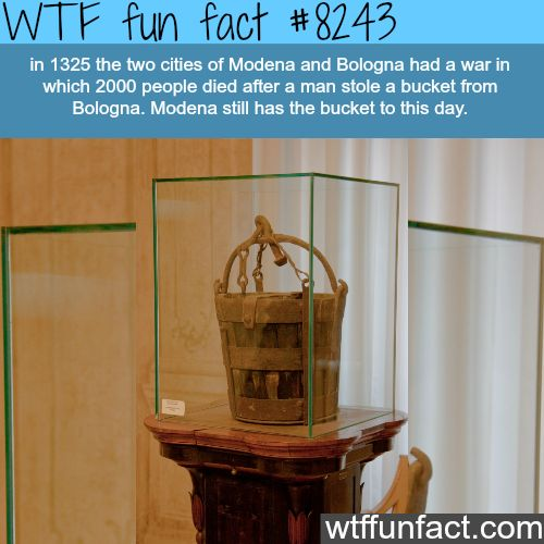 2000 people died for this bucket - WTF fun facts