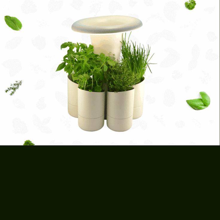 Toda automatizada, a horta Calla rega as plantas na hora certa e ilumina as ervas imitando o ciclo solar, abrigando até seis vasos portáteis