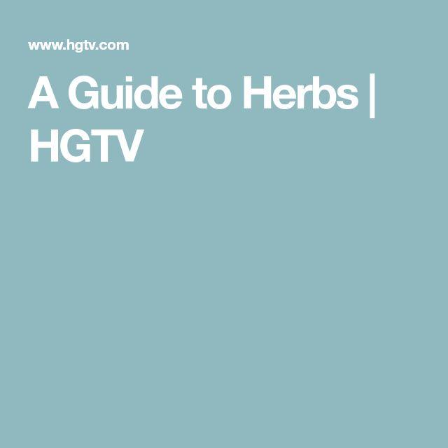 Grow Your Own Kitchen Countertop Herb Garden Herbs 400 x 300