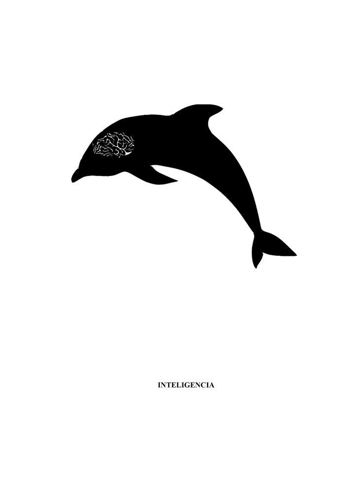 Silueta  Delfin