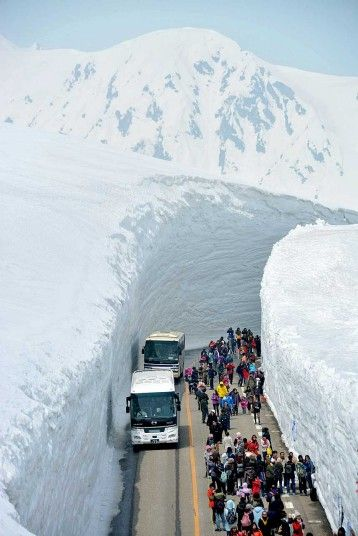 Tourists take pictures of the 50ft (15-metre) high snow walls as the Tateyama Kurobe Alpine Route opens in Tateyama, Toyama, Japan.