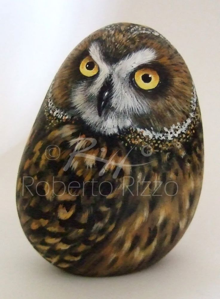 How to paint owls on rocks!