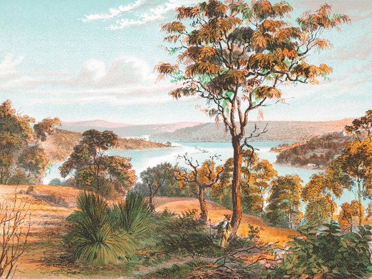 Middle Harbour, Sydney, New South Wales 1878