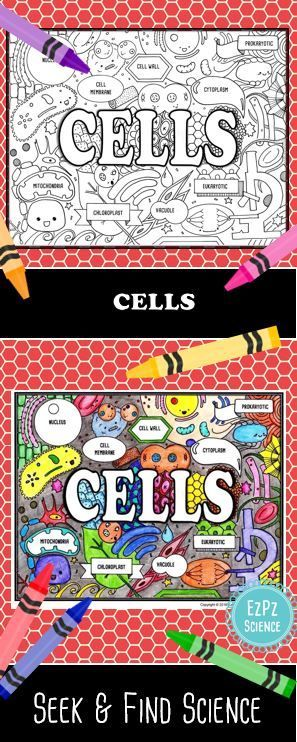 Students will enjoy learning about science topics with Cells Seek & Find Science Doodles. Great for student engagement and retention.  Suggestions for Seek & Find Science  Unit title page for an ISN  Project image on board for Warm up  Use it as a hook before the start of a unit  laminate for a DIY activity  Get student groups talking  Use it as a closer/ review  Enrichment activity  Includes Cells Doodle/Color Sheet with key terms and assignment page.