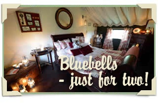 Come stay at The Dandelion Hideaway at Osbaston Farm