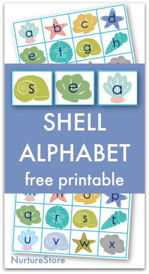 Seashell alphabet free printable for ocean themed literacy activities