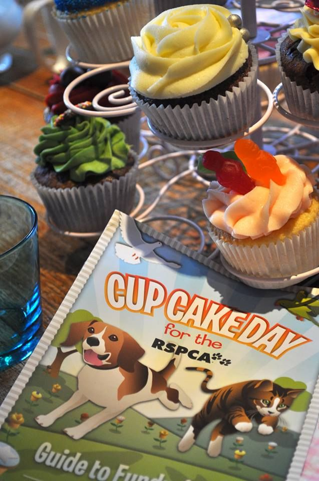 RSPCA supporter Maya Kavanagh's event for Cupcake Day in W.A. (Maya: http://pinterest.com/mayakav/)
