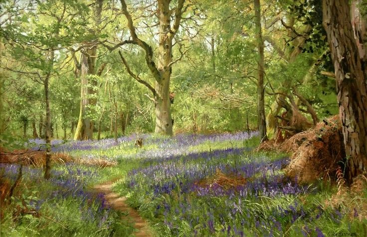 """""""Hare in North Leigh Woods"""" (2011) [Sold] By Peter Barker, from Banbury, Oxfordrshire, England (current location, South Luffenham, England) - oil on linen canvas; 20 x 30 in - http://www.peterbarkerpaintings.co.uk/ https://www.facebook.com/PeterBarkerARSMA"""