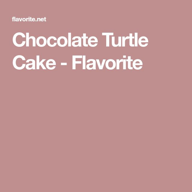 Chocolate Turtle Cake - Flavorite