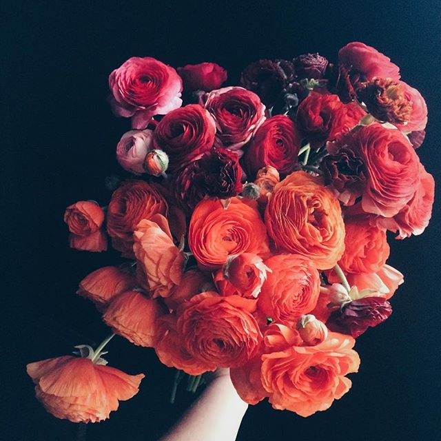 Absolutely love the dark red with the deep orange. These flowers in the flower girl's crowns, my bouquet and the main central arrangement.