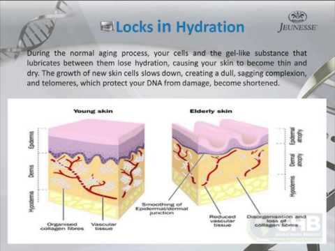 The Science Behind Advanced Night Repair with Dr. Vincent Giampapa - YouTube www.cmunizzi.jeunesseglobal.com