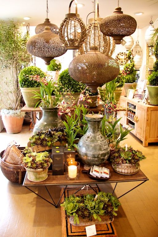 love!!!! orchids, succulents, lanterns, candles!!!    photo: nay vogel