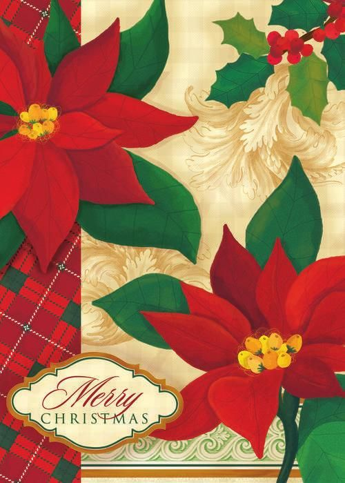 Card Isle - Meaningful, Personalized Greeting Cards by Holli Conger