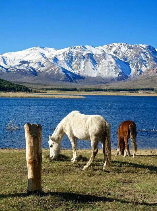 Argentina. Patagonia. Esquel.
