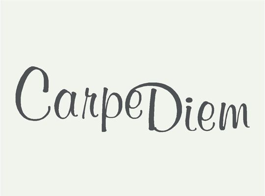 best carpe diem images carpe diem cute tattoos   carpe diem or seize the day in latin can t decide which one i want