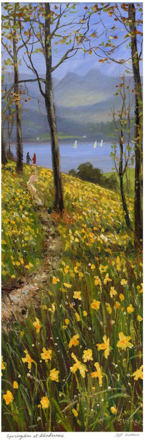 Springtime at Windermere. Jeff Sudders print.  Lovely daffodils in the Lake District!