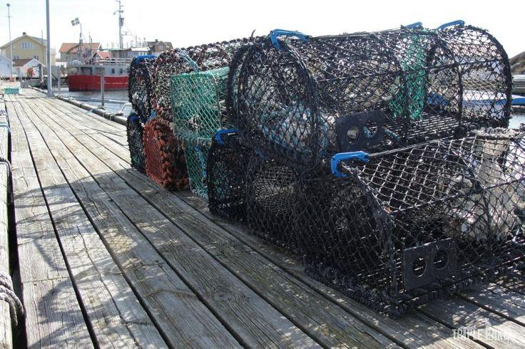 Fotö, lobster cages