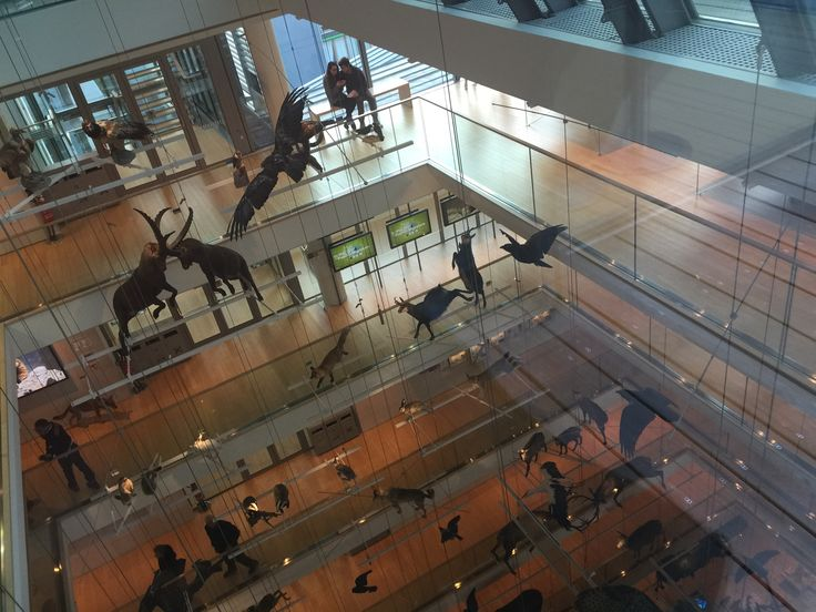 Trento Museo Renzo Piano