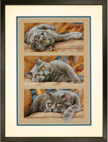 Cats - Cross Stitch Patterns & Kits (Page 2) - 123Stitch.com