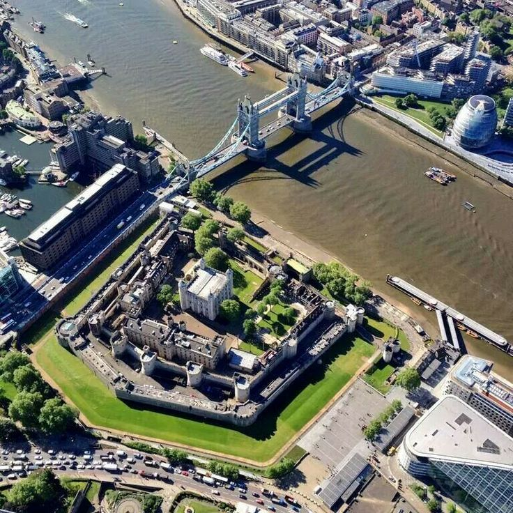 A raven's view of the Tower of London