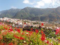 Visitors' guide to Los Realejos, Tenerife