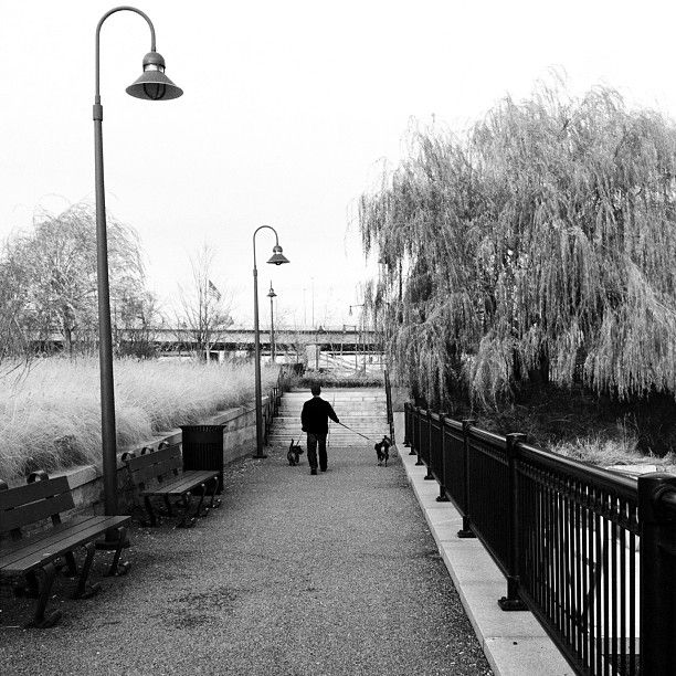 Strolling through North Point Park in Cambridge, Massachusetts. Photo submitted by Instagram user tarapacheco to #GEInspiredME contest.: North Point, Instagram User, Geinspiredme Contest, User Tarapacheco