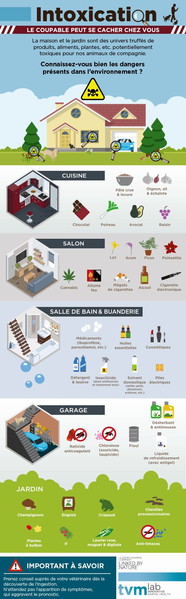 Intoxication du chien et du chat : quels poisons se cachent à votre domicile ? - 12 juillet 2016 - Sciencesetavenir.fr