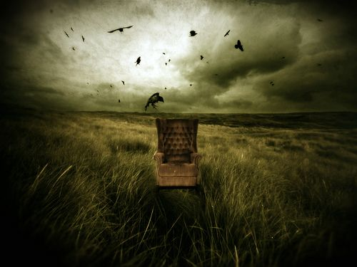 I love crows. They get such a bad rap.: Dark Emotional, Carmen Goldsmith, Counted Crowsforev, Inspiration Photography, Artsy Stuff, Photography Carmen Gonzalez, 2008 Counted, Dark Fall, Ol Crows