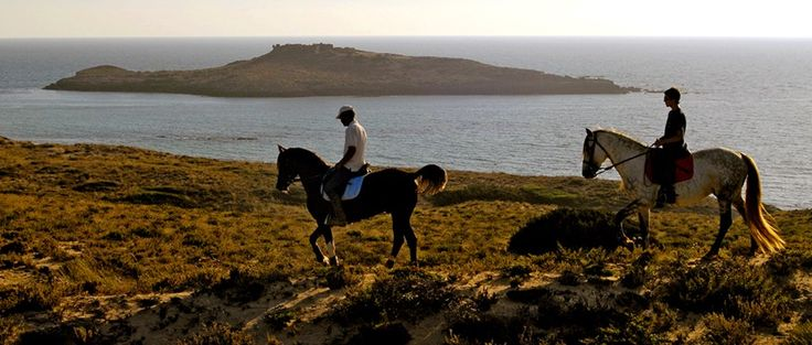 Horseback Riding on the #RotaVicentina