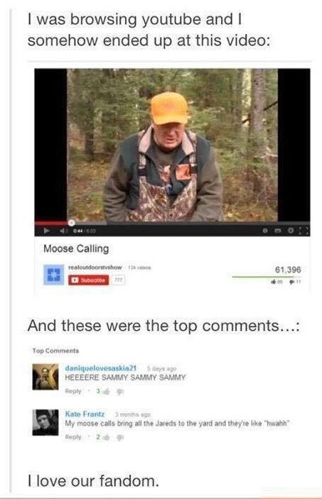 Moose call video comments section. lol the video disabled the comment section now #spn
