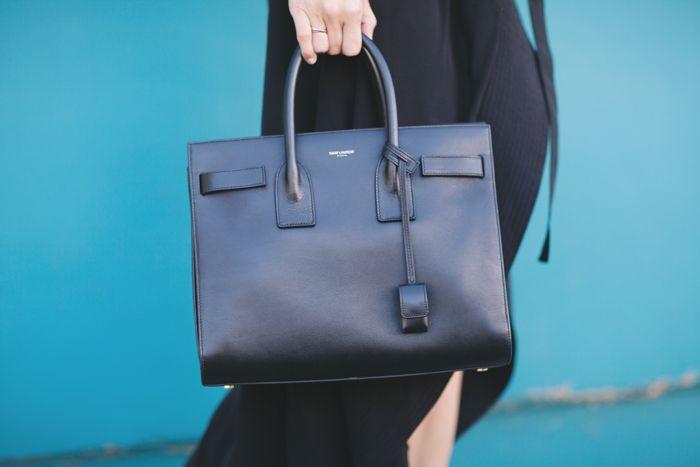 Yves Saint Laurant Sac du Jour bag/ Damsel in Dior