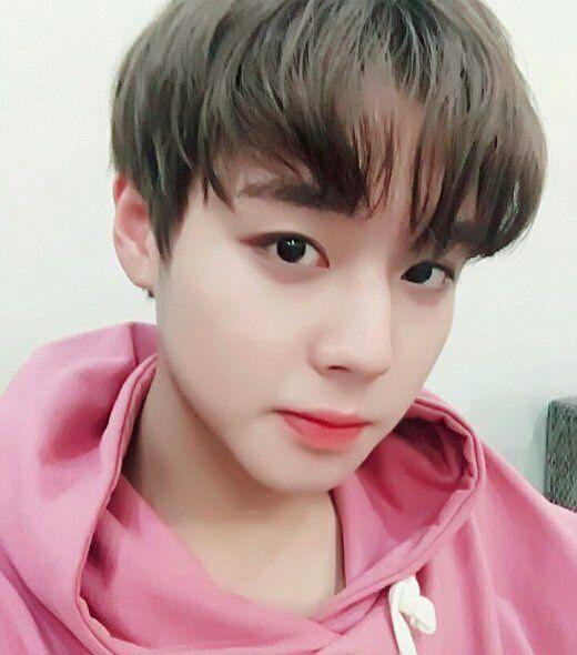 "343 lượt thích, 1 bình luận - PARK JIHOON <WANNA-ONE> (@jihoonhunters) trên Instagram: ""[170830] Kiss the Radio update with Jihoon Pink is really suits to Jihoon  Our pinky boy …"""