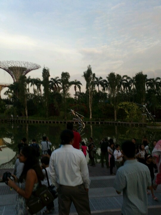 Nice pond at Gardens by the Bay!
