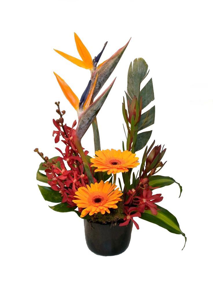 Modern arrangement - Donvale Flower Gallery