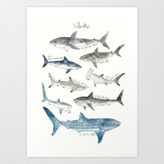 Shark Nursery Idea - Buy Sharks by Amy Hamilton as a high quality Art Print. Worldwide shipping available at Society6.com. Just one of millions of products available.