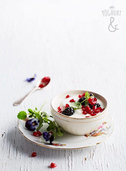 Yoghurt & Granateple & Bjørnebær - Se flere spennende yoghurtvarianter på yoghurt.no - Et inspirasjonsmagasin for yoghurt.