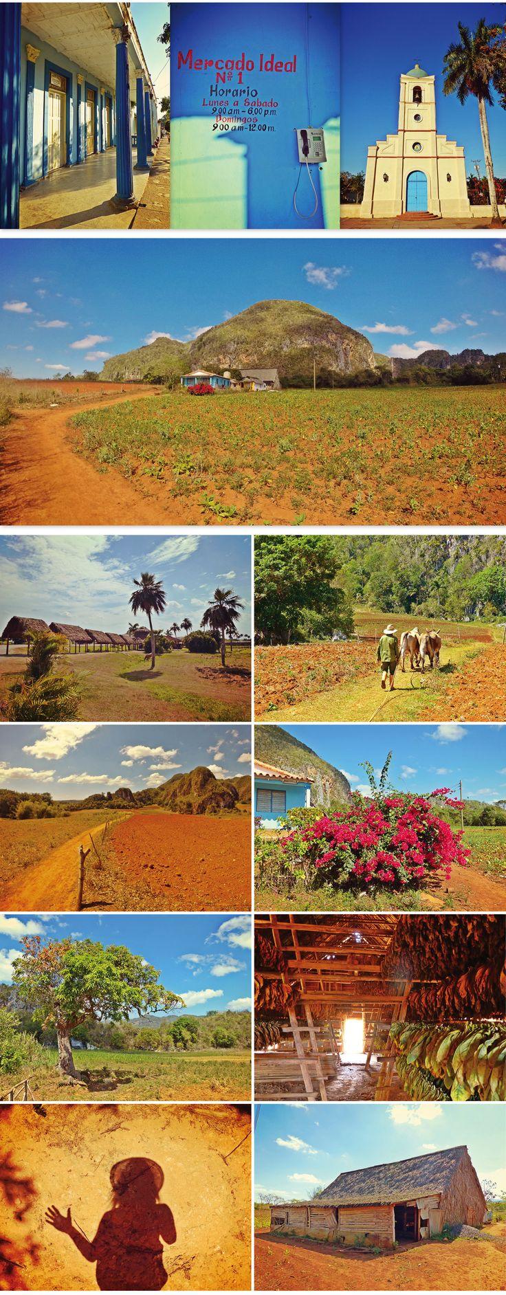 Vinales, montagnes, cigares et plantation de tabac - 28 raisons d'aimer Cuba!