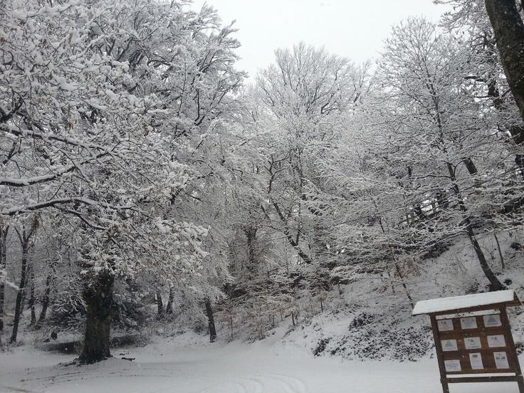 #SanSalvatore ( #MassinoVisconti #Novara #Piedmont #Italy ) #snow