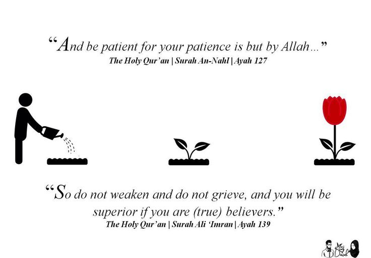 """And be patient for your patience is but by Allah"" - The Holy Qur'an Surah An-Nahl:127  ""So do not weaken and do not grieve and you will be superior if you are (true) believers."" - The Holy Qur'an Surah Ali 'Imran:139  Snapchat minidawah 