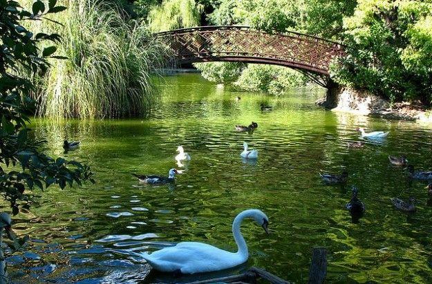 Garden of Ninfa, Lazio, Italy, http://blog.topitalytravel.com/ #wonderfulgardens #specialpaces #amazingview #specialnature #bestofItaly