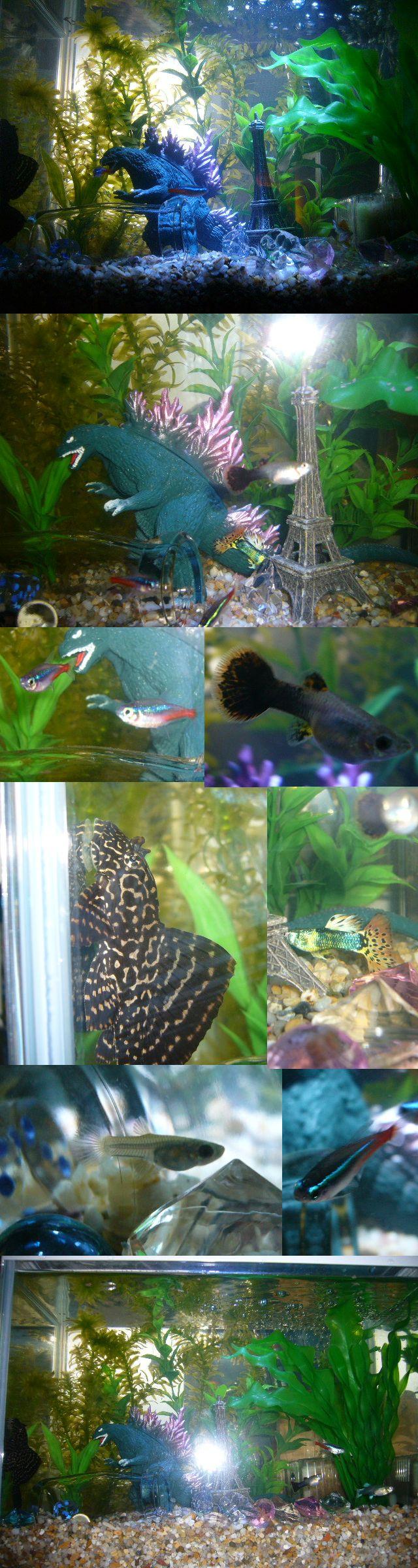 Fish aquarium edmonton - Godzilla Attacks Underwater Paris Fish Tank Theme By Gingaakam