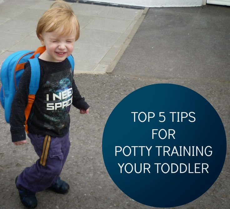 Top 5 Tips For Potty Training Your Toddler