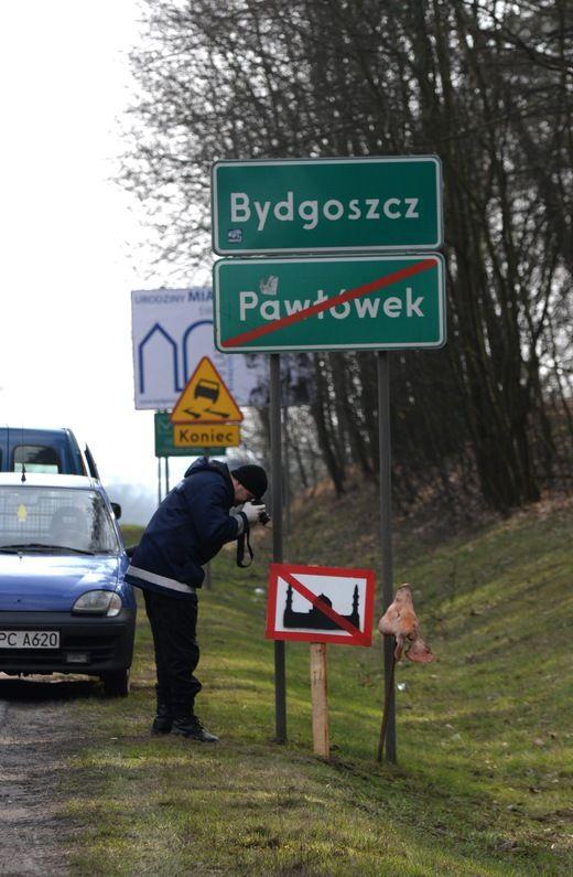 Bydgoszcz: Łby świń i przekreślone meczety przy drogach wjazdowych