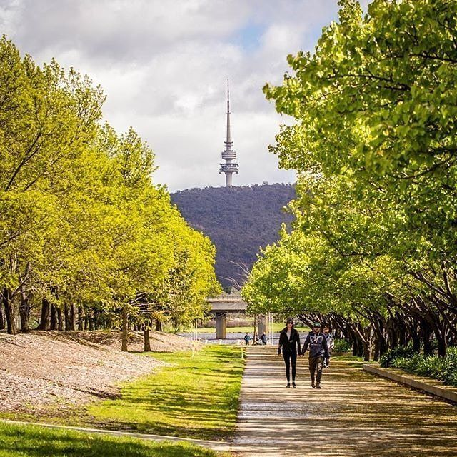 """Lovely spot for a morning walk."" Instagrammer @traceys.photography recently took part in a popular local pastime of walking the bridge-to-bridge loop around Lake Burley Griffin. The five-kilometre loop between the Kings Avenue and Commonwealth Avenue bridges is surrounded by galleries and museums, parks, and walking and cycling paths. #visitcanberra #onegoodthingafteranother"