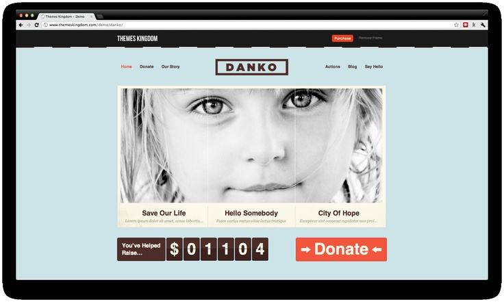 Danko is a (free!) Premium Wordpress Theme thought for organizations and fundraising. That's really interesting.