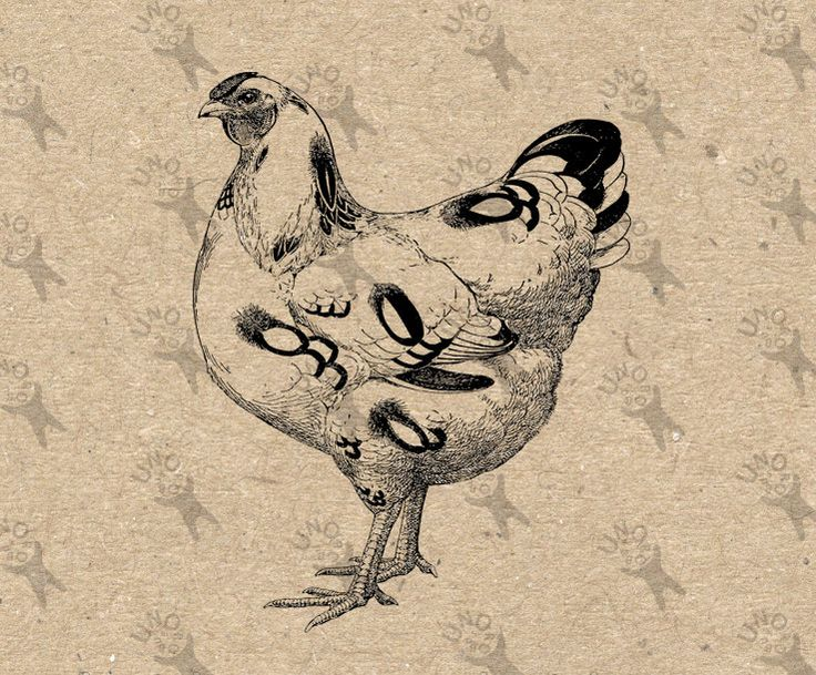 Vintage image Chicken Hen Instant Download Digital printable retro picture clipart graphic for collage artprint fabric transfer HQ300dpi by UnoPrint on Etsy