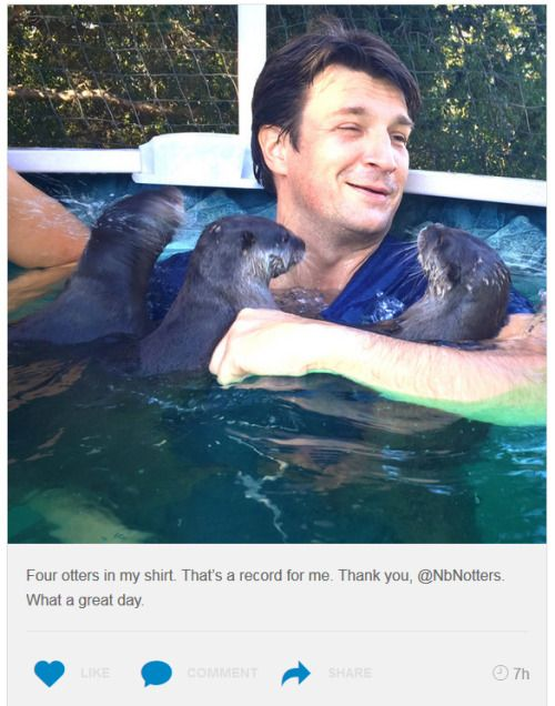 Nathan Fillion cuddling with otters.