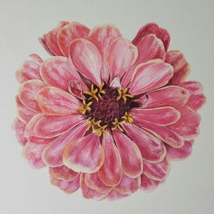 Watercolour flower by Joanne Gross