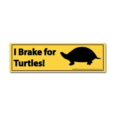 I Brake for Turtles Bumper Sticker. I should probably get one of these :)